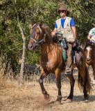 Reportage: Colo  CCAS 15-17ans itinérante à cheval à partir de Ceilhe