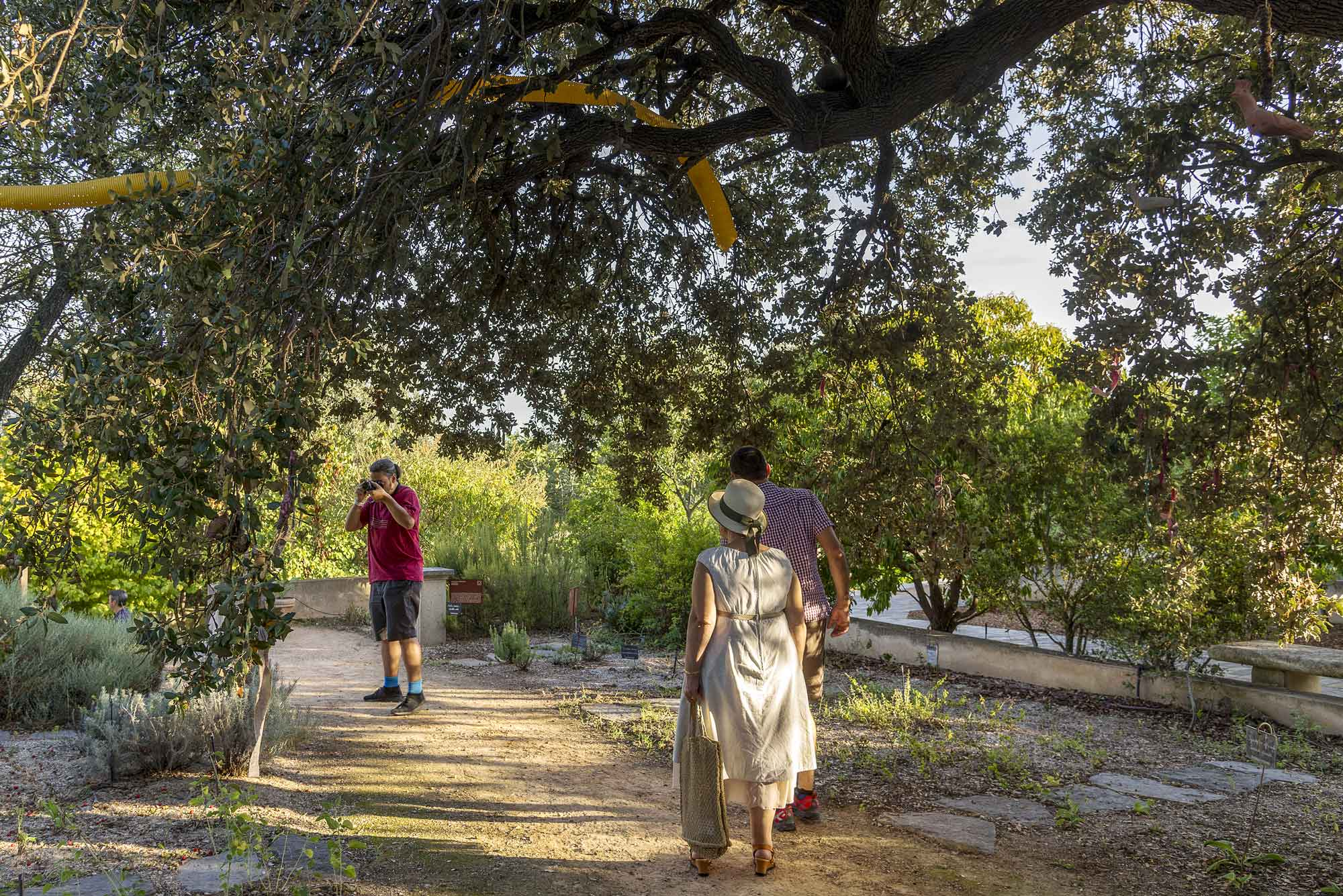 Jardin antique mediterraneen