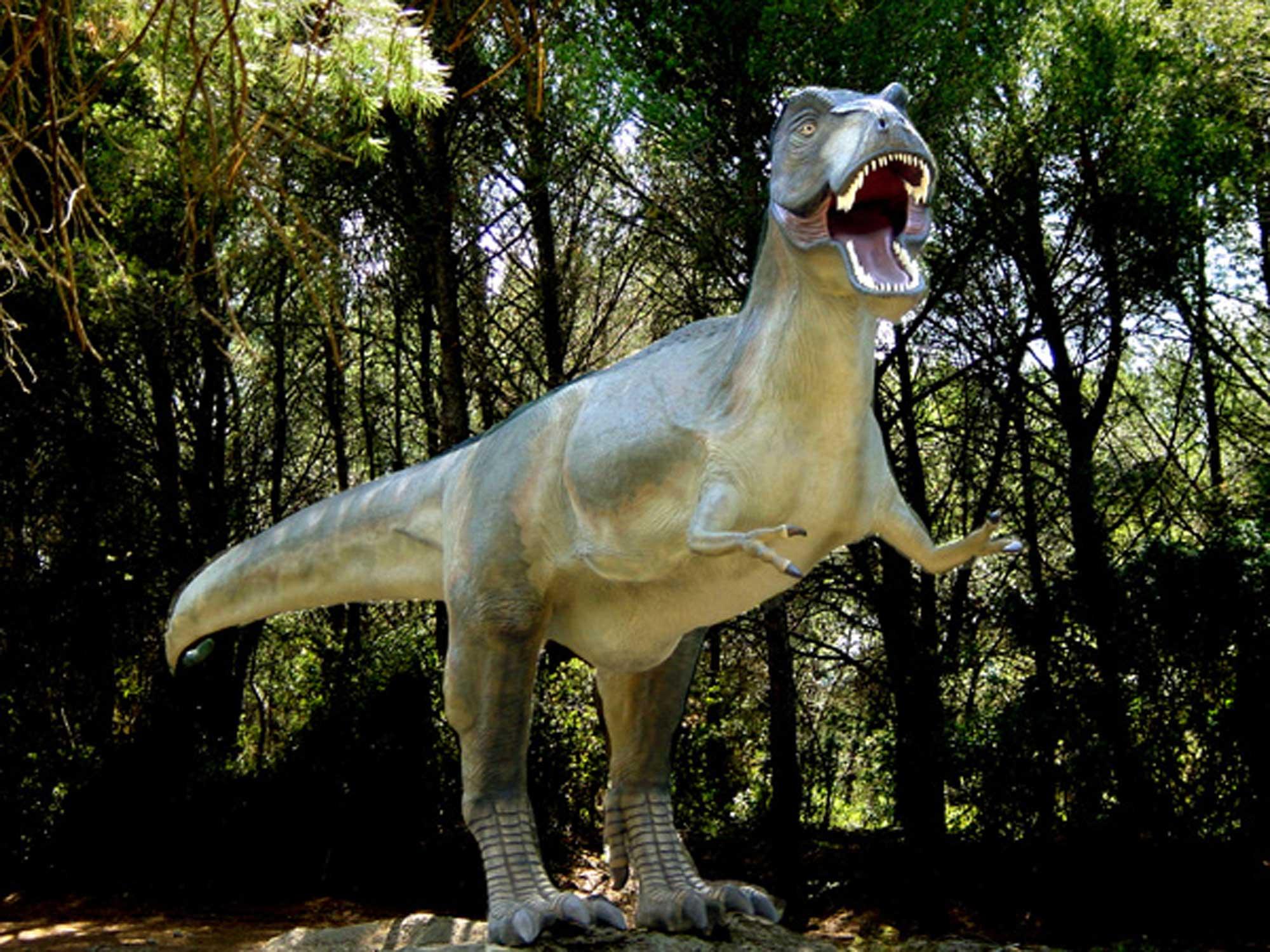 Musée Parc des dinosaures