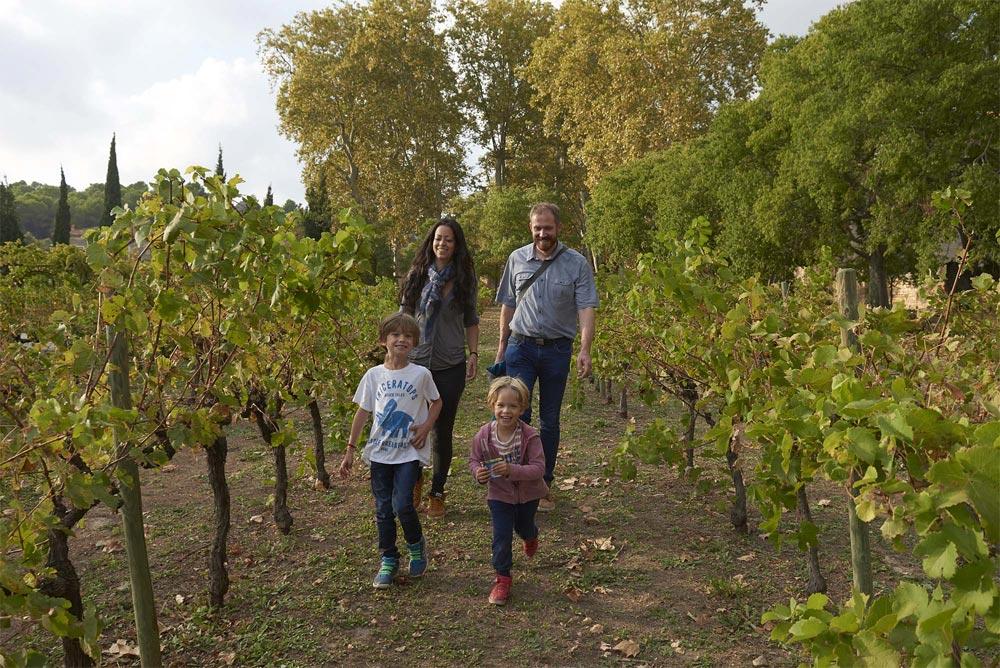 Vignes et jardins Abbaye de Valmagne